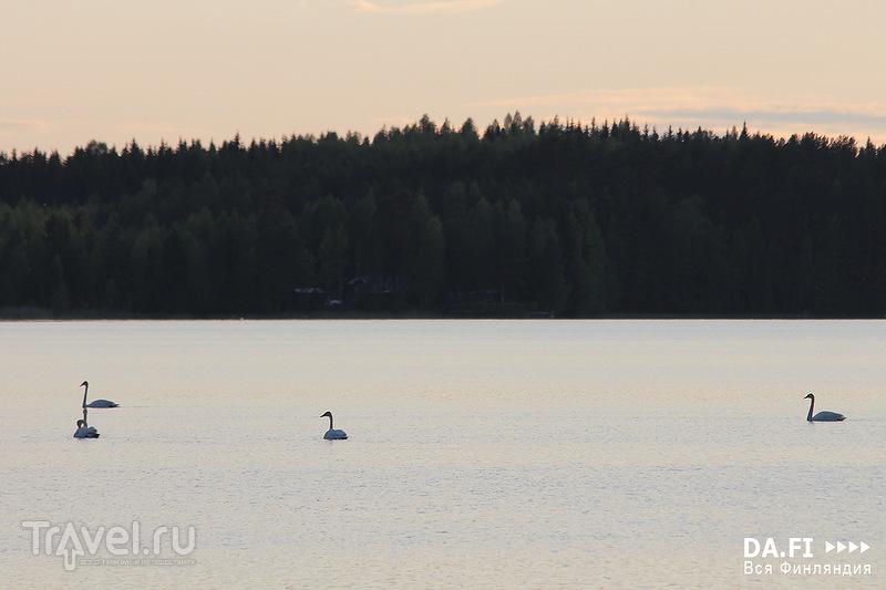 Летний отдых в Финляндии