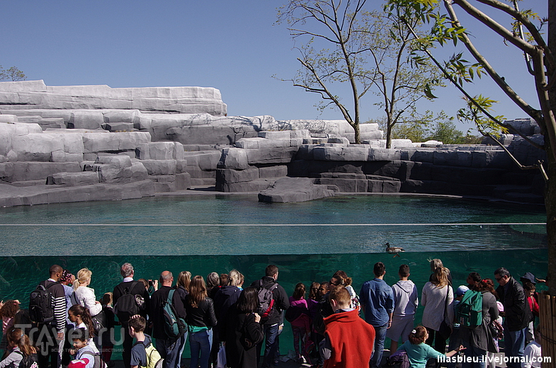 Зоопарк в Париже / Франция