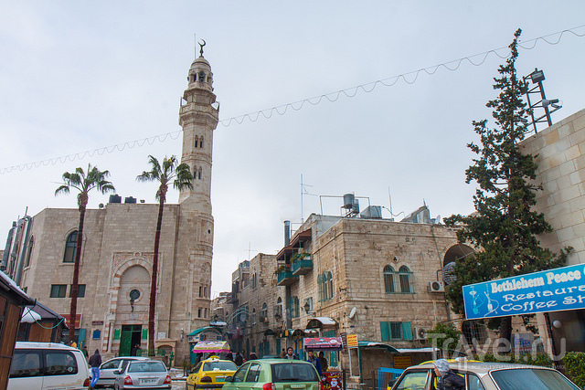 Палестина / Палестина