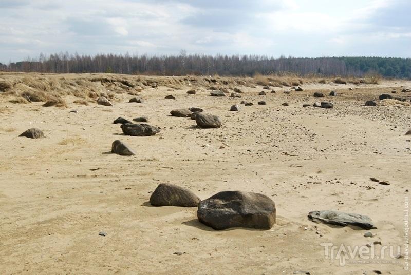 Рыбинское водохранилище. Берег / Россия