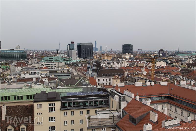 Собор Святого Стефана и Вена с высоты колокольни / Австрия