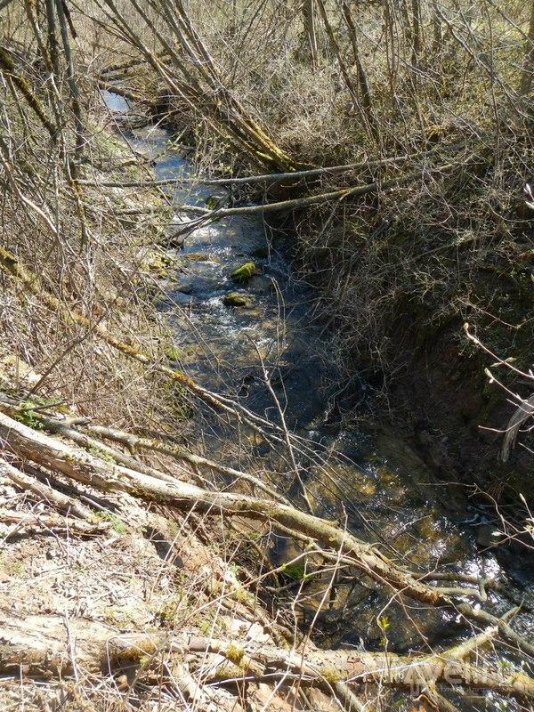 Горчаковщинский водопад на реке Волхов / Россия