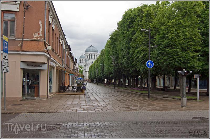 Каунас, вторая столица Литвы / Фото из Литвы