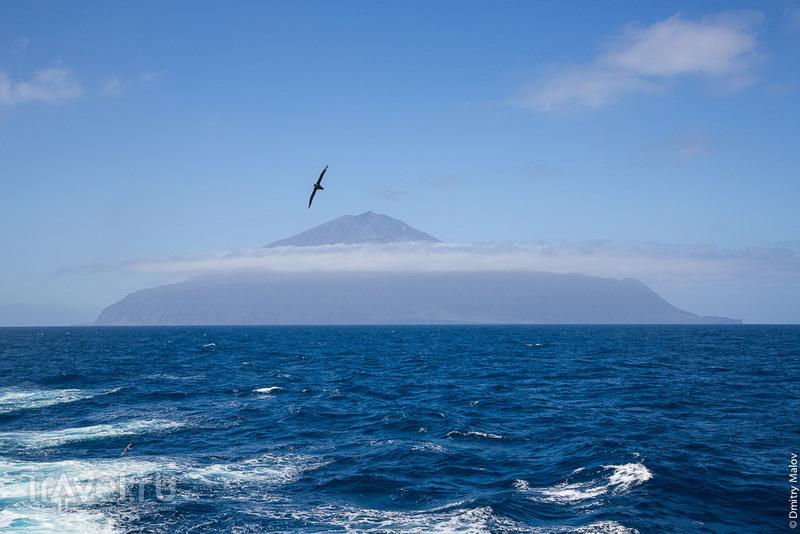 Тристан-да-Кунья с характерным конусом вулкана, облаком и альбатросом / Фото с острова Святой Елены