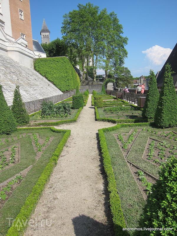 Сад / Фото из Франции