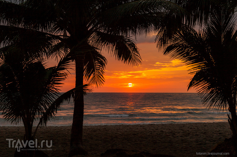 Таиланд. Печальный опыт на Ко Лане / Фото из Таиланда