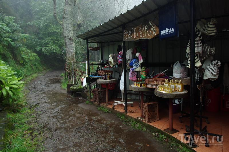 Дождливый балкон и другие достопримечательности / Португалия
