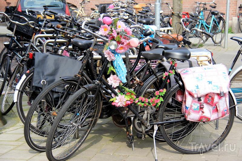 Велосипеды на улицах Амстердама / Фото из Нидерландов