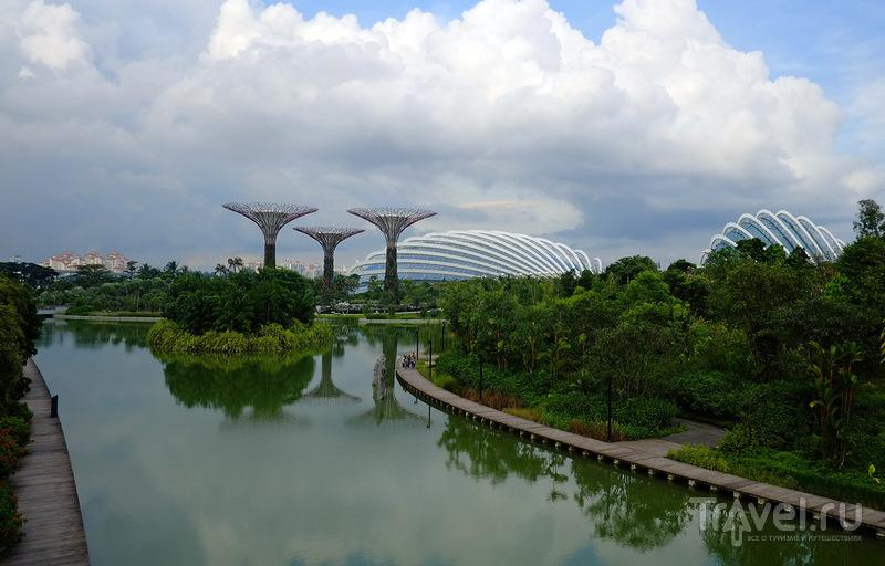 Gardens by the Bay или все в сад! / Фото из Сингапура