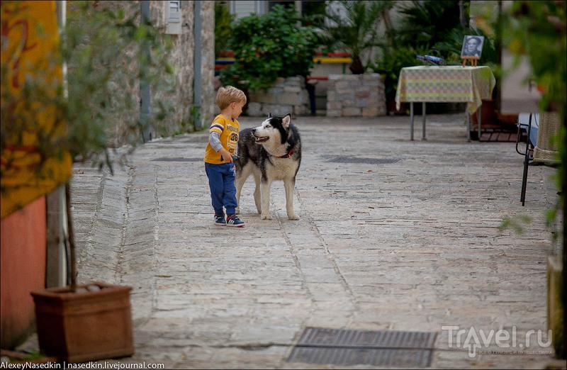 Прогулка по Будве / Фото из Черногории