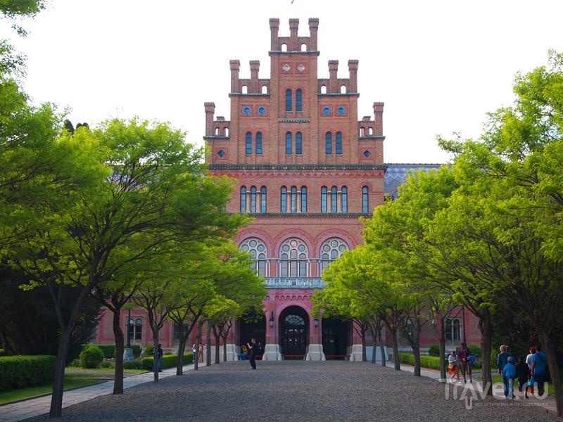 Черновицкий Национальный университет / Украина