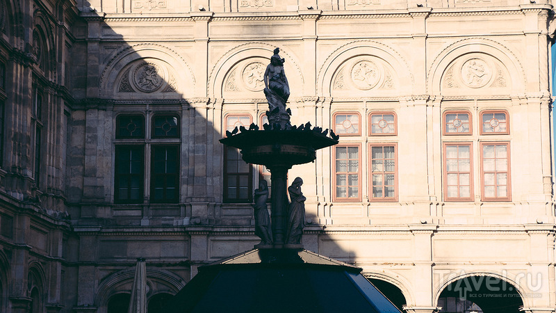 Вена: сообразительные официанты и ангелы-тинейджеры / Австрия