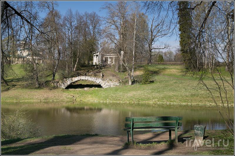 Самый красивый в России парк / Фото из России