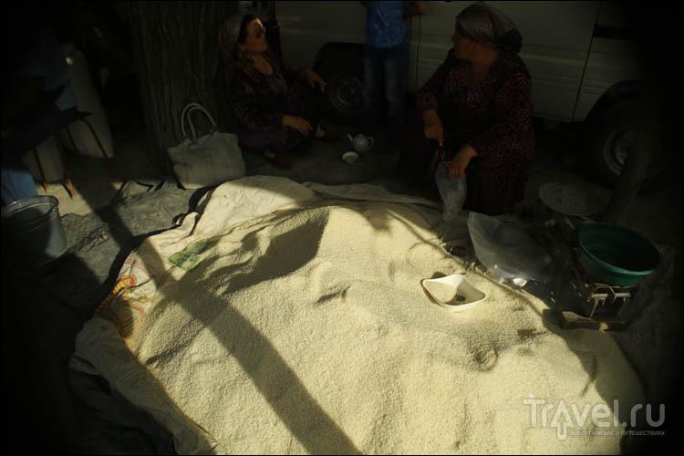 Базары Самарканда: плов, специи, животные, посуда и куча интересного / Узбекистан