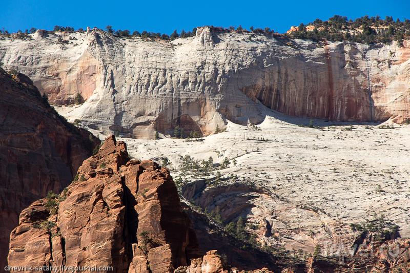 Национальный парк Зайон, США / Фото из США