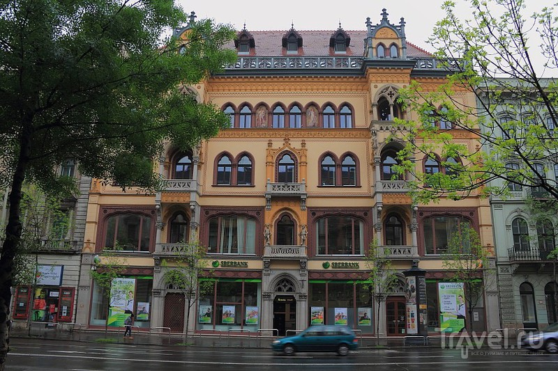 Дождь / Фото из Венгрии