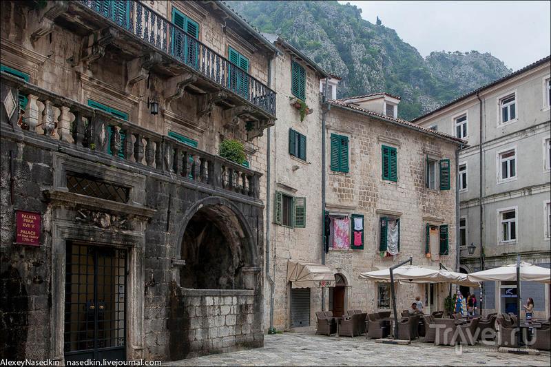 Город Котор, которому к лицу облака / Фото из Черногории