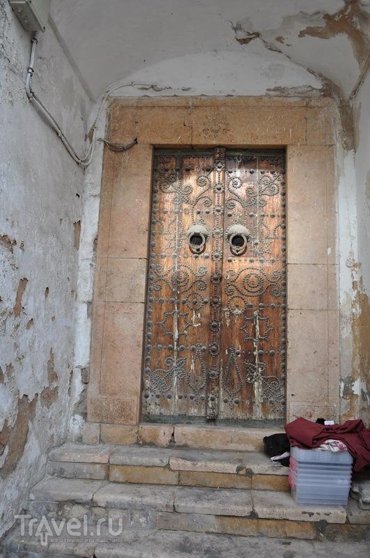 Весенний Тунис / Фото из Туниса