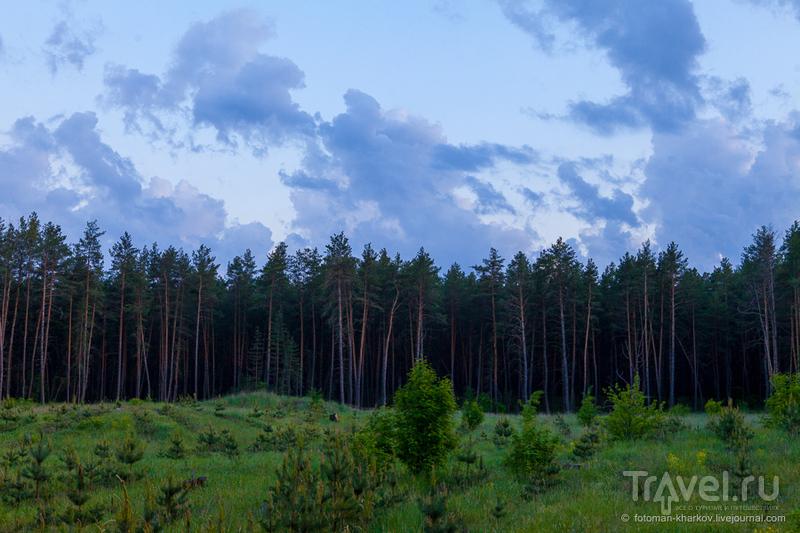 Змиевская ТЭС. Ночная красота / Украина