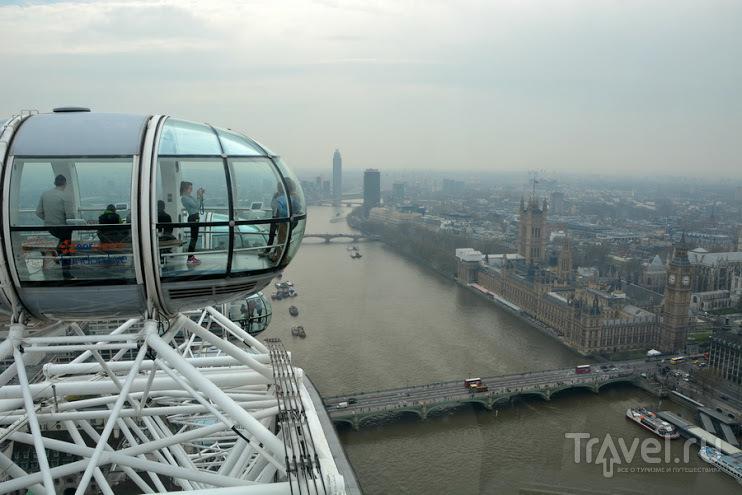 Лондон бэйби / Великобритания