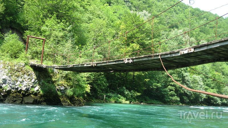 Река Пива - черногорская красотка с бурным нравом / Фото из Черногории