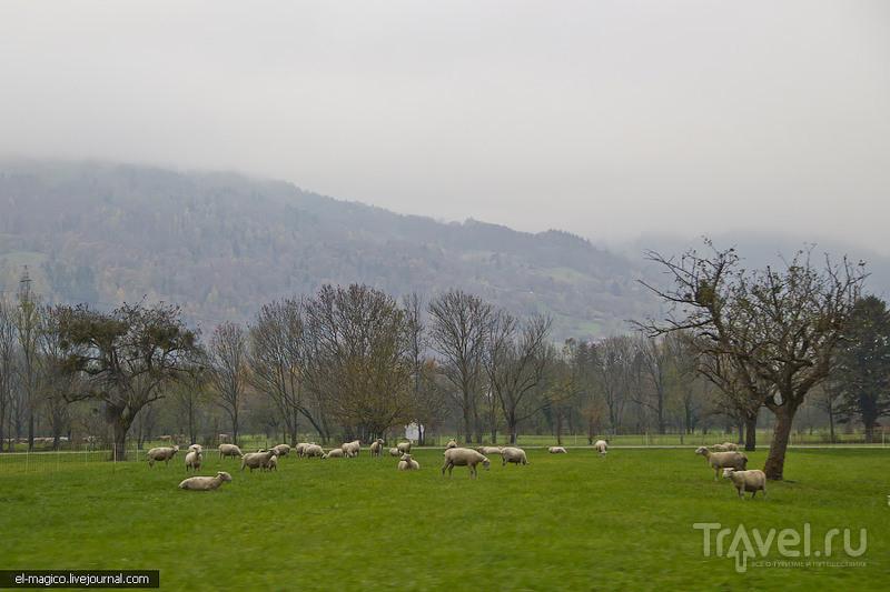 Лихтенштейн - что посмотреть за один день. Вадуц и Бальцерс / Фото из Лихтенштейна