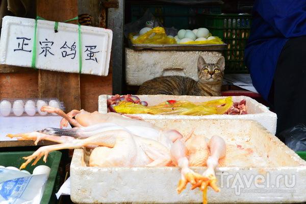 """Шанхай. Еда. Где поесть? Фаст-фуд. """"Самовар"""". Пекинская утка / Китай"""