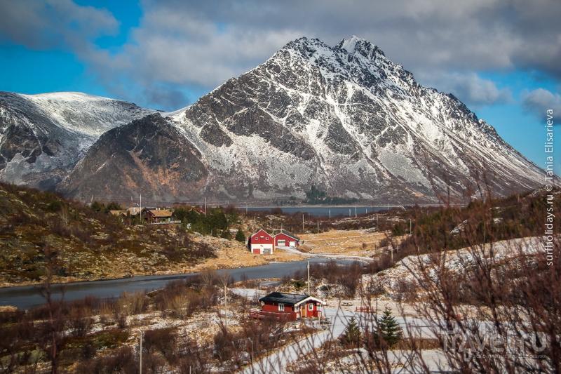 Красота дороги, фьордов, снега и гор / Фото из Норвегии