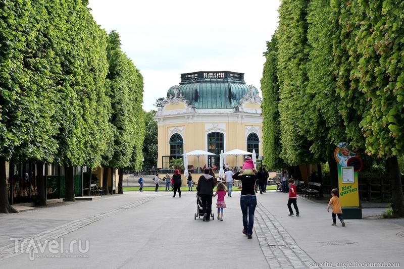 Самый старый зоопарк в мире / Австрия