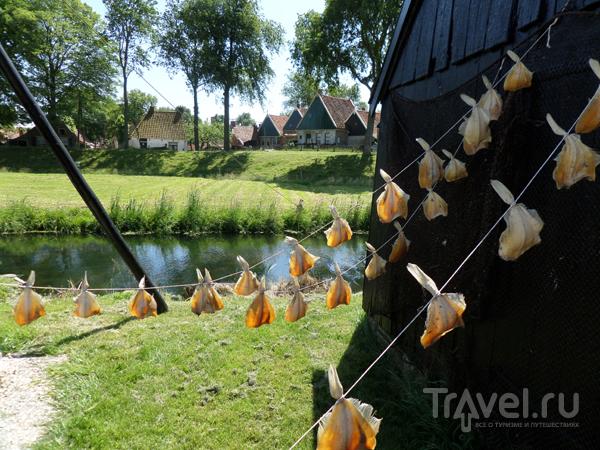 Энкхейзен (Голландия): один день в рыбацкой деревне прошлого века / Нидерланды