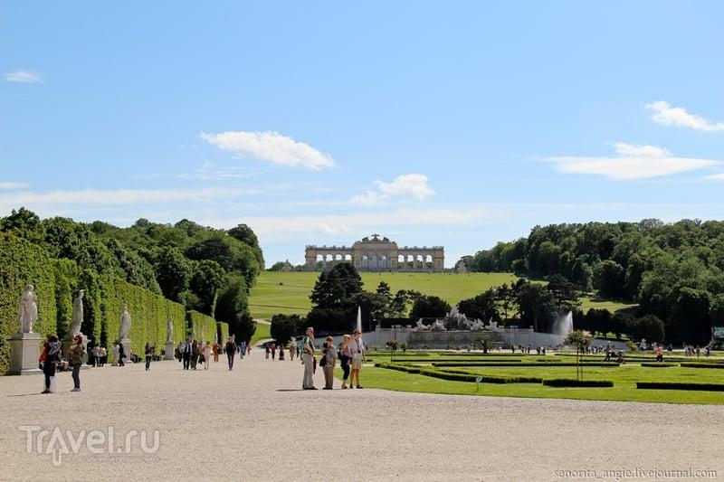 Цветущий парк Шенбрунн, Вена / Австрия