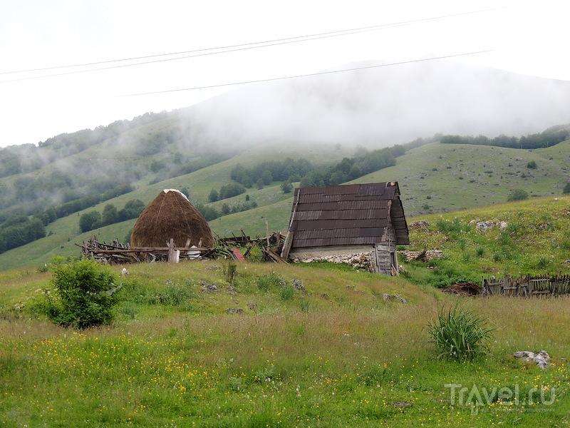 """Живописная дорога по """"Дурмитору"""" в Черногории / Фото из Черногории"""