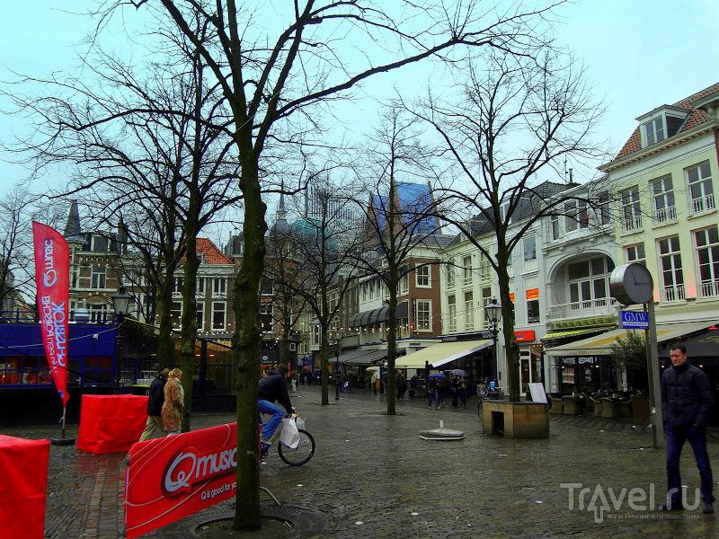 Гаага - зимой. Зимняя прогулка по королевской столице / Нидерланды