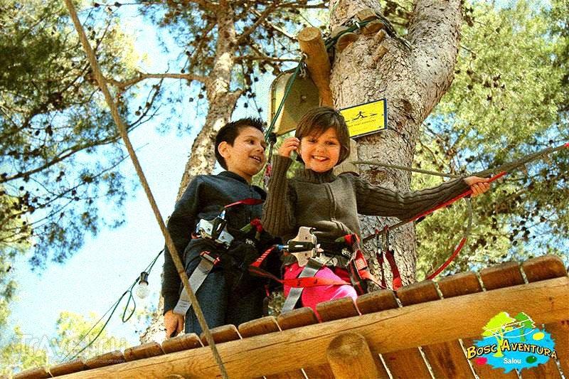Веревочный парк - веселое и полезное развлечение для детей и взрослых