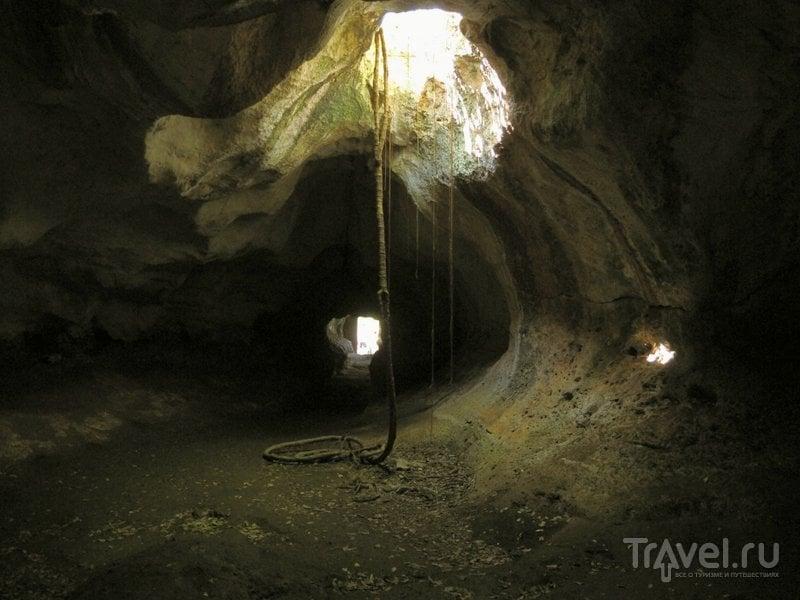 Как канаты с потолка пещеры свисают корни и лианы