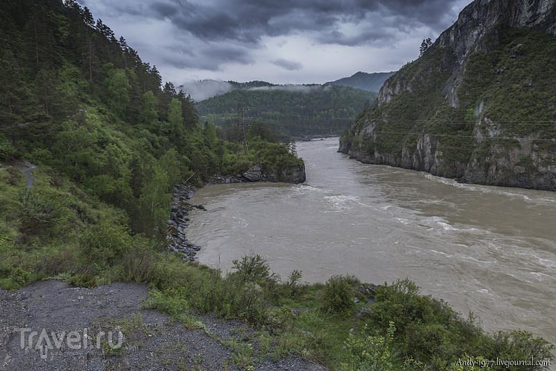 Алтай во время ЧС, Июнь 2014 / Фото из России