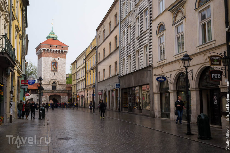 Королевская дорога, или как посмотреть Краков за два часа / Фото из Польши