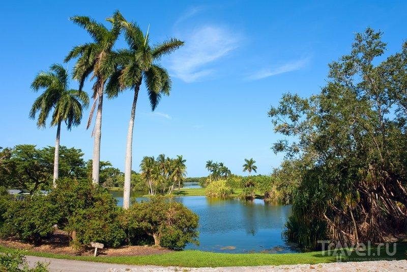 В озерах ботанического сада могут водиться аллигаторы - об этом туристов предупреждают специальные таблички