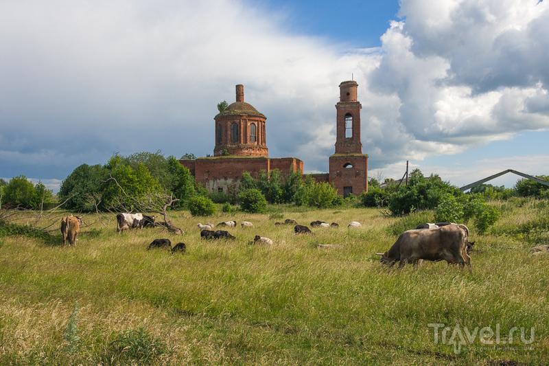 Terra incognita: Тульская и Липецкая области / Россия