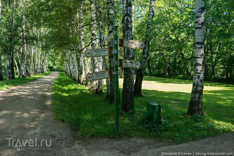 Ясная Поляна сегодня / Фото из России