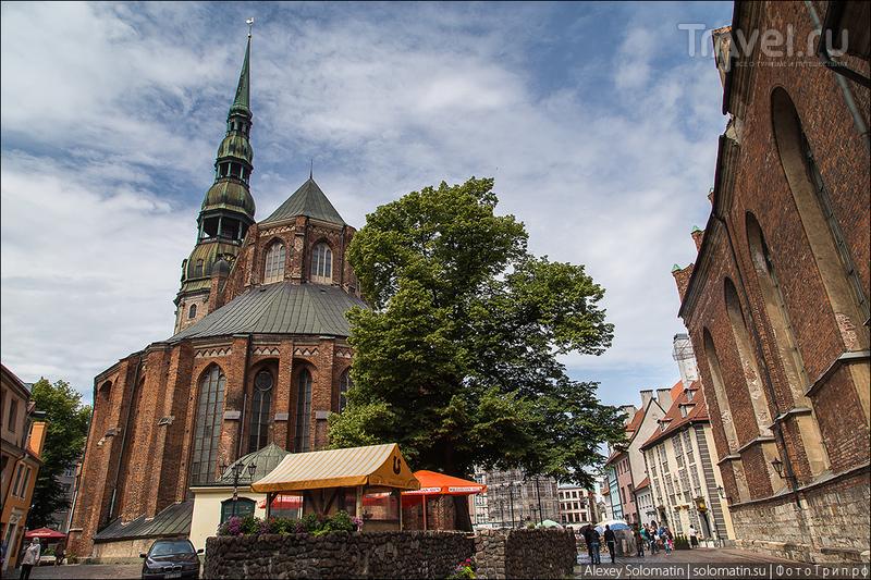 Церковь Святого Петра в Риге / Фото из Латвии