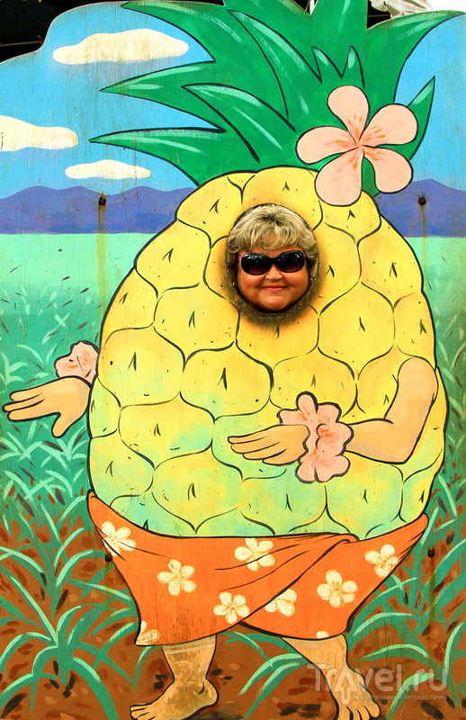 Ананасовая плантация Dole Pineapple Plantation на острове Оаху, Гавайи / США