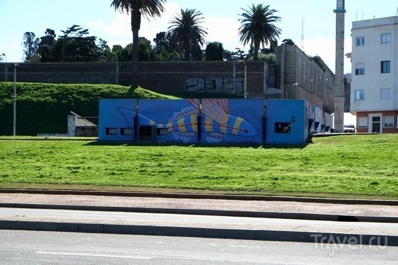Монтевидео - город граффити / Уругвай