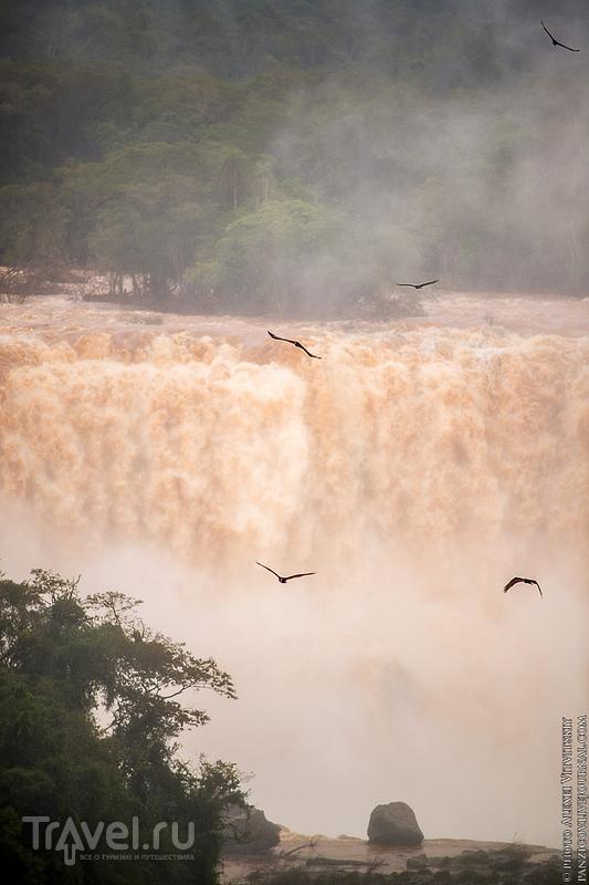 Бразилия: Водопады Игуасу / Бразилия