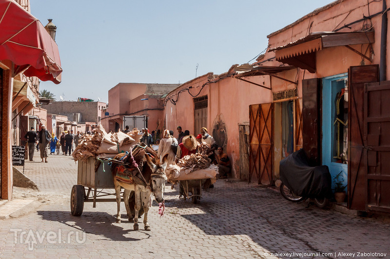 Кожевенное производство в Марракеше / Фото из Марокко