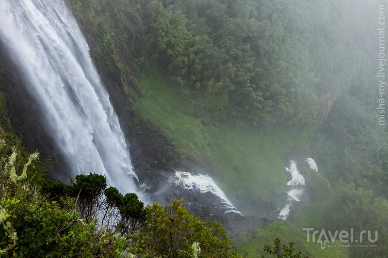 Национальный парк Абердаре / Кения