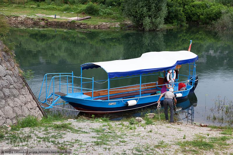 Черногория. Скадарское озеро / Черногория