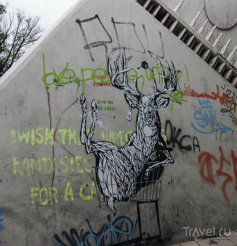 Чёрный ангел Тарту / Эстония
