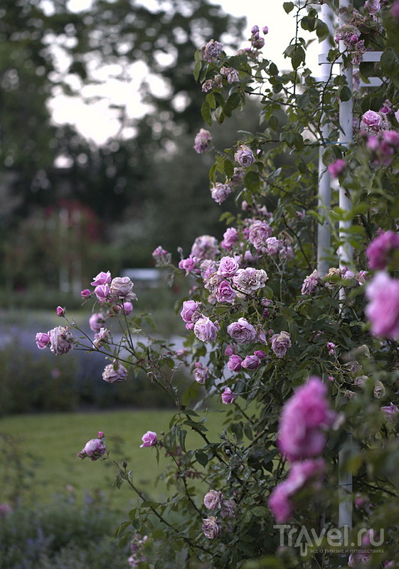 Петршинские сады / Чехия