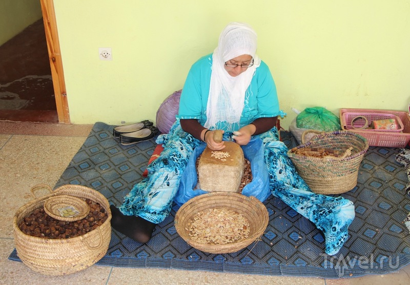 Марокко: дерево Арган(а), шафран, амлю, короли и аргановое масло / Марокко